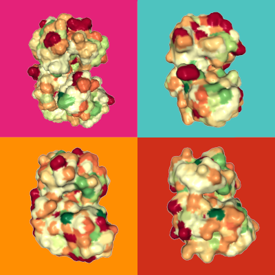 Las cuatro p38 kinasas